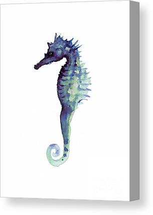 Seahorse Canvas Prints