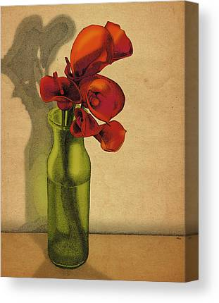 Calla Lilly Canvas Prints