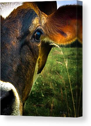 Maine Agriculture Photographs Canvas Prints