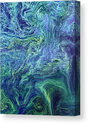 Phytoplankton Canvas Prints