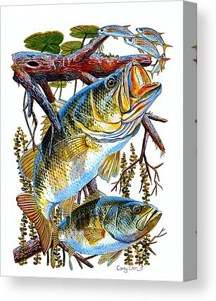 Lake Okeechobee Canvas Prints
