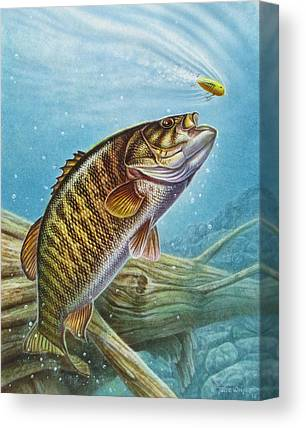 Bass Canvas Prints