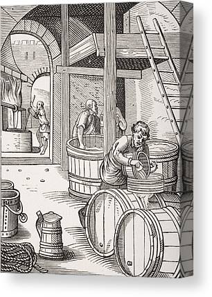 Fermentation Drawings Canvas Prints