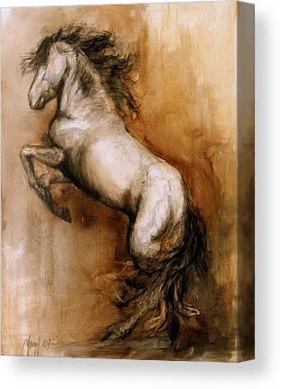 Icelandic Horse Paintings Canvas Prints