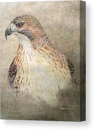Native American Spirit Portrait Drawings Canvas Prints
