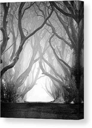 Ballymena Canvas Prints