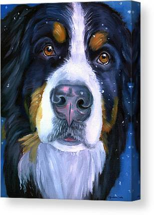 Bernese Mountain Dog  Canvas Prints