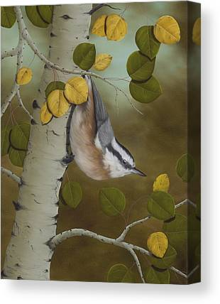 Nature Card Canvas Prints