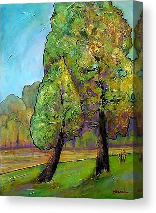 Fir Trees Canvas Prints