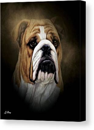 English Bull Dogs Canvas Prints