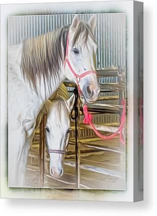 El Paso Art Association Canvas Prints