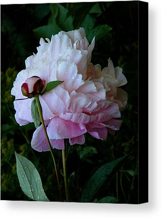 Romantic Art Limited Time Promotions