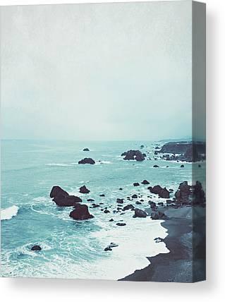 Robin Canvas Prints