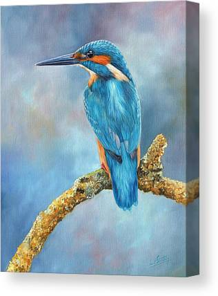 Kingfisher Canvas Prints