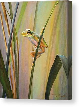 Spring Peepers Canvas Prints