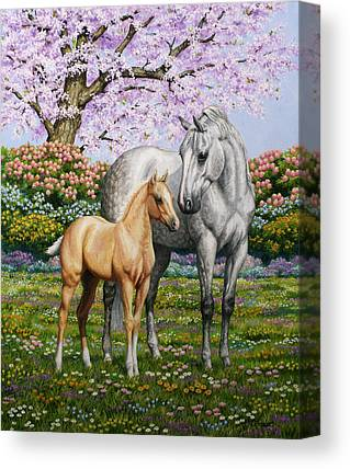 Palomino Foal Canvas Prints