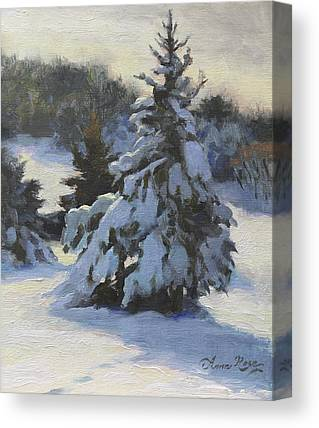 Fir Trees Canvas Prints