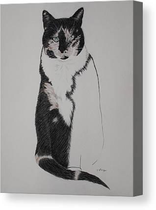 Spirit Cat Essence Canvas Prints
