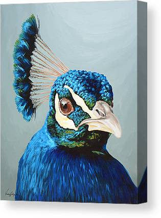 Peacock Canvas Prints