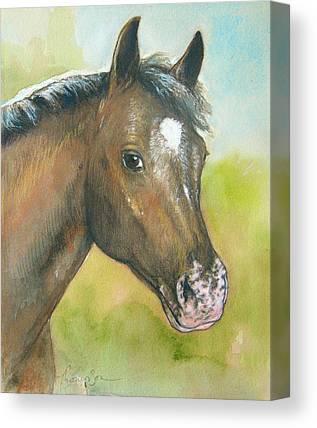 Bay Horse Mixed Media Canvas Prints