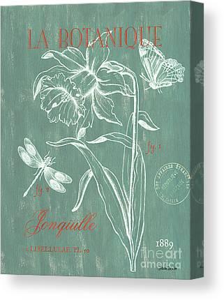 Daffodils Drawings Canvas Prints