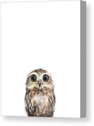 Owls Canvas Prints