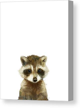Raccoons Canvas Prints