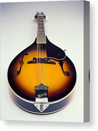 Mandolin Canvas Prints
