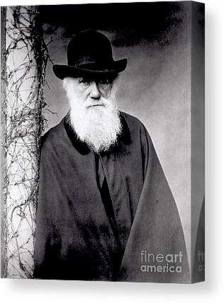 Charles Darwin Canvas Prints