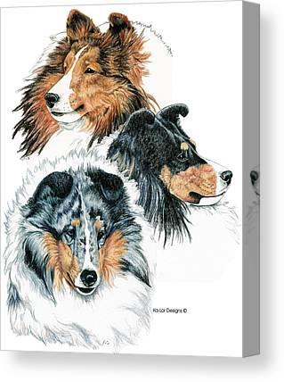 Shetland Sheepdog Drawings Canvas Prints