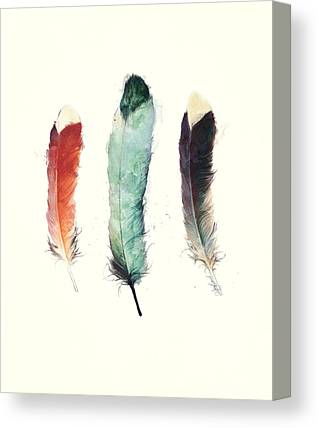 Feathers Canvas Prints