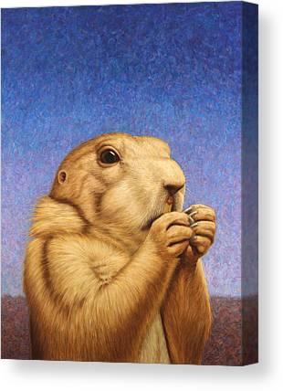 Groundhog Canvas Prints