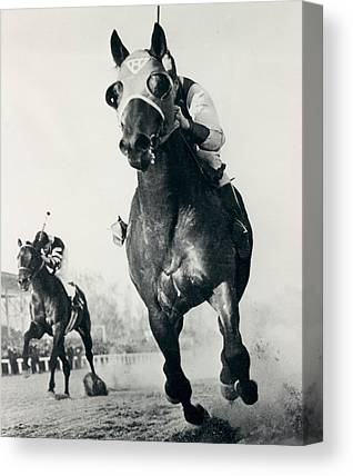 Horse Show Canvas Prints