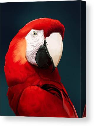 Parrot Canvas Prints