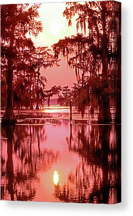 Atchafalaya Basin Canvas Prints
