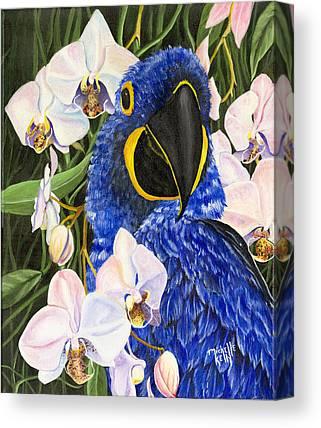Michelle Kelly Canvas Prints