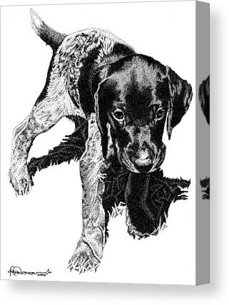 Puppy Drawings Canvas Prints