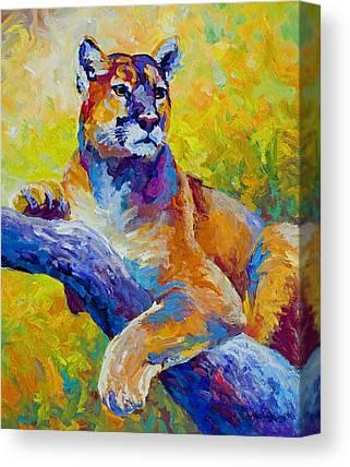 Mountain Lion Canvas Prints