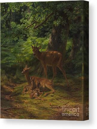 Nursing Deer Canvas Prints