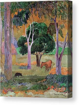 Dominican Landscape Or Canvas Prints