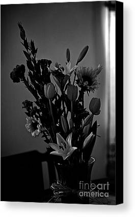 Interior Still Life Limited Time Promotions