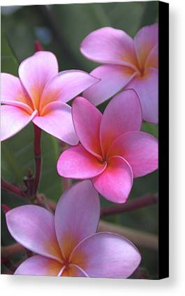 Flowers Of Hawaii Limited Time Promotions