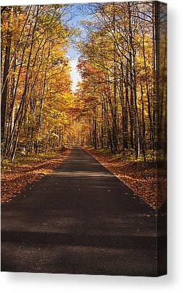 Roaring Fork Road Canvas Prints