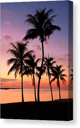 Tropics Canvas Prints