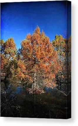 Tree Roots Digital Art Canvas Prints