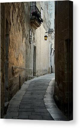 Maltese Canvas Prints