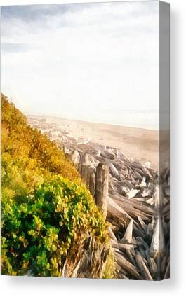 Washington Driftwood Beach Fog Canvas Prints