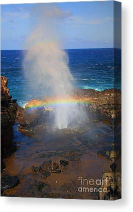 Blowhole Canvas Prints