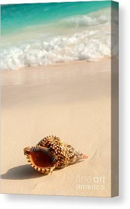 Shore Photographs Canvas Prints