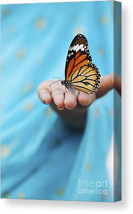 Striped Butterfly Canvas Prints